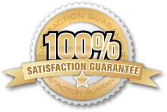 SEO Satisfaction Lehi